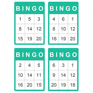 20 ball bingo cards of bingo deal